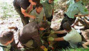 Agents.jpg_Departament d'Agricultura, Ramaderia, Pesca i Alimentació