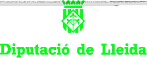 Dip Lleida