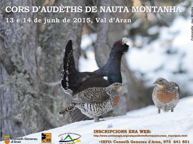 panneu_ornitologia_aran